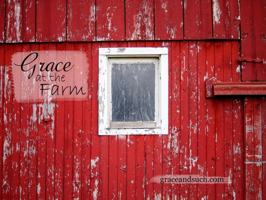 Grace at the Farm