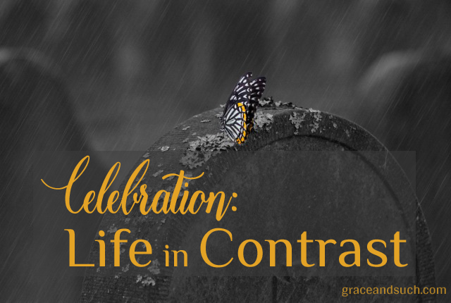 Celebration: Life in Contrast