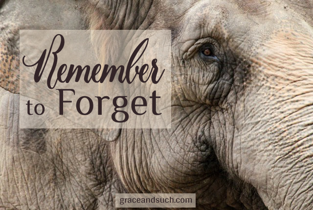 Remember to Forget